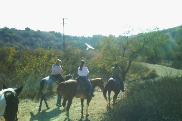 Trail Ride - 11/2009